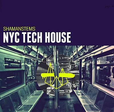 shamanstems acid house