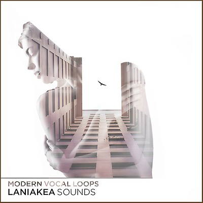 Vocal Samples, Modern Vocal Loops 3, Laniakea Sounds,
