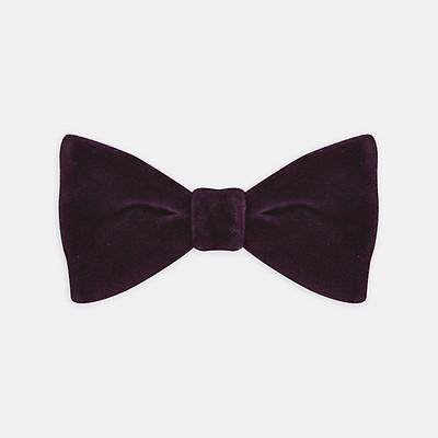 29060bbb74fb Purple Velvet Bow Tie