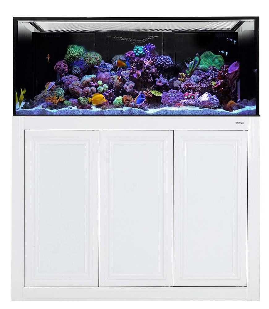 Innovative Marine NUVO INT 170 Gallon Aquarium with APS Stand (White)