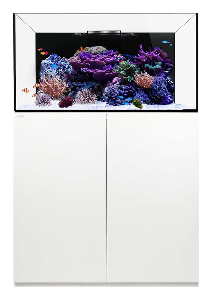 Reef 100.3 Waterbox Aquariums - 100 gallons - White