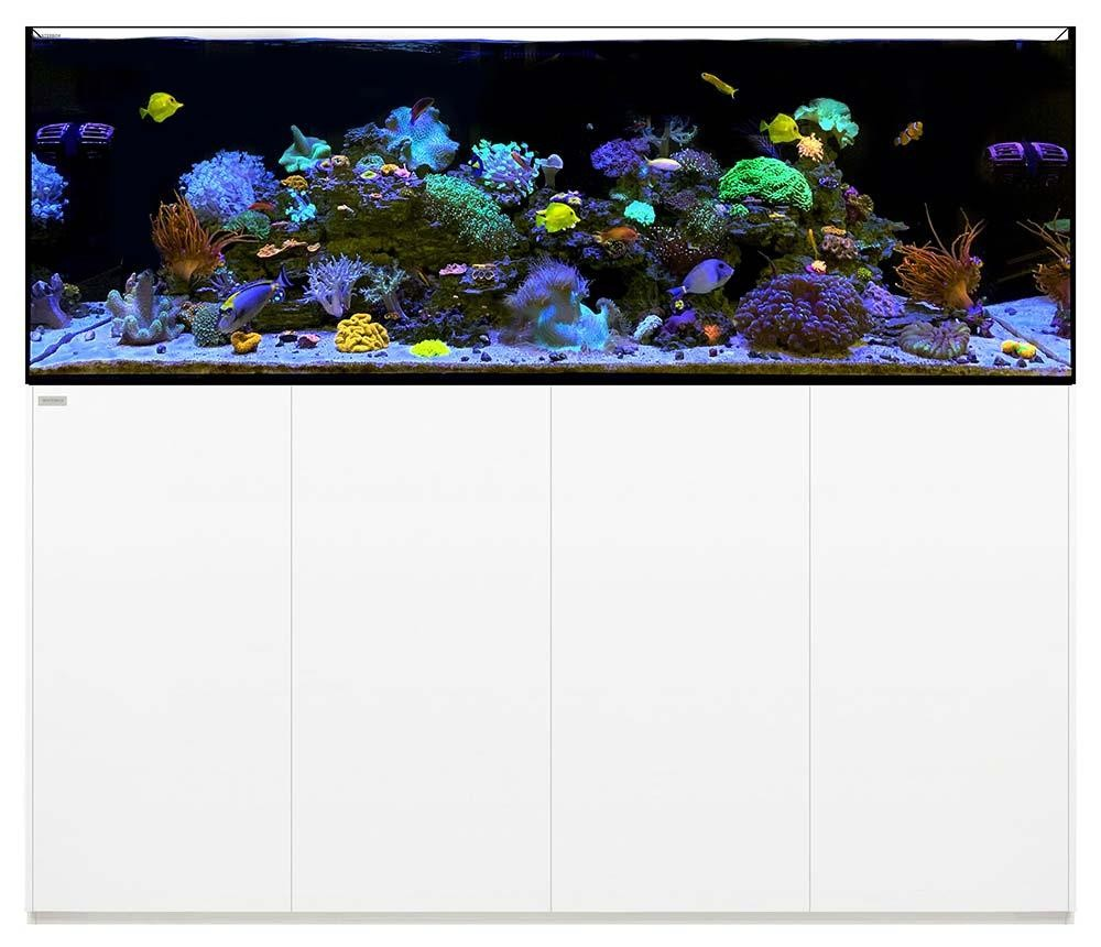 Reef 220.6 Waterbox Aquariums - 220 gallons - White