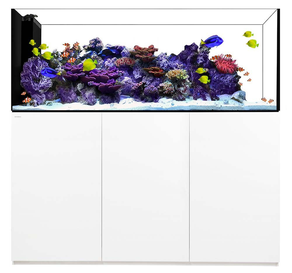 Peninsula 7225 Waterbox Aquariums - 228 gallons - White