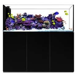 Peninsula 7225 Waterbox Aquariums - 228 gallons - Black