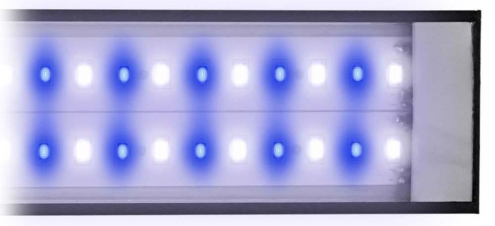 Reef Brite LumiLite Pro Blue White 50/50 LED Light Fixture - 24 inch