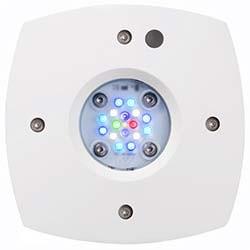 AI Prime 16HD LED Light - Aqua Illumination (White)