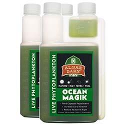 OceanMagik - Live Four Species Phytoplankton 32 oz Blend (Nano, Tet, Iso & Thal) - Algae Barn