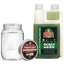 Poseidon's Feast + OceanMagik - Live Copepods and Phytoplankton 16 oz Combo Pack - Algae Barn