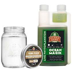 5280 Pods + OceanMagik - Live Copepods and Phytoplankton 16 oz Combo Pack - Algae Barn