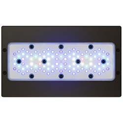 EcoTech Radion XR30 G5 Blue LED Light