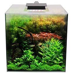 Fluval Flora Planted Aquarium Kit - Complete 14.5 Gallon System