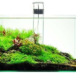 Dennerle Scapers Tank 10 Gallon Aquarium Kit with LED Light Fixture