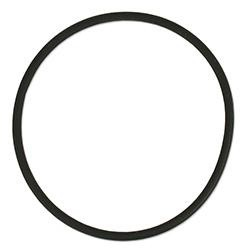 O-Ring for Korallin Reactors