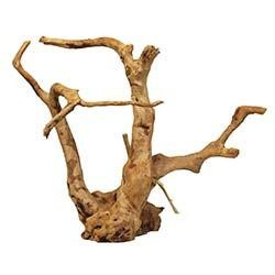 Spider Wood for Aquariums and Terrariums (Medium) - 12 to 16 Inch - Zoo Med