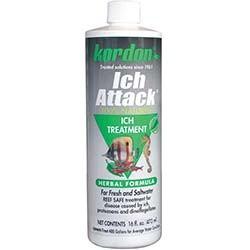 Kordon Ich Attack Disease Inhibitor - 16oz