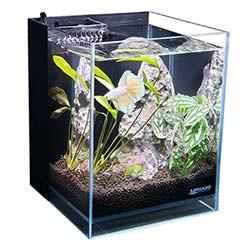 Lifegard Aquatics Nano Tank with Built-In Filter (1.2 Gallon) - CRYSTAL Elevated Low Iron Glass