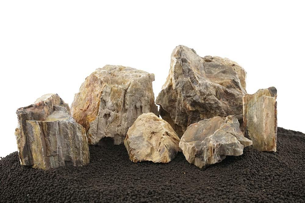 Canyon Petrified Stone Mixed Freshwater Rocks - Small Set - Lifegard Aquatics