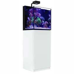 Red Sea Max Nano Aquarium - 20 Gallon with ReefLED 50 (White)