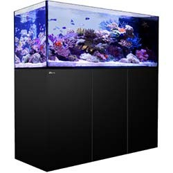 Red Sea Reefer Peninsula 650 Aquarium - 140 Gallon (Black)
