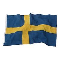 FLAGGA SKÅNE 300 CM - Flaggor   Vimplar - Flaggstänger   Flaggor ... 49c684accb230