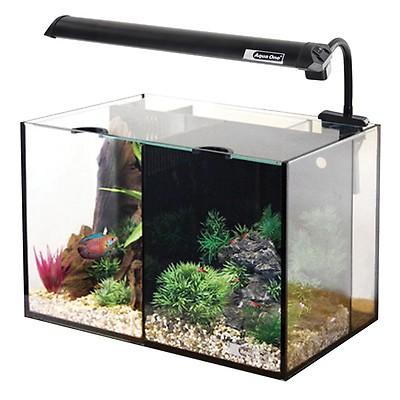 Aquarium Supplies Pet Supplies Bigalspets Com