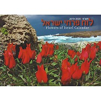 Jodi Sugar 16 Month Inspirational Photography of Israel Calendar