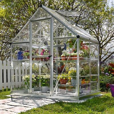 Palram Harmony 6X8 Silver Greenhouse - Clear Polycarbonate