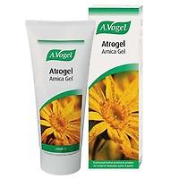 Biofreeze Pain Relief Gel & Spray - Evergreen